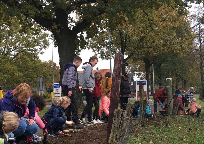 Duitse en Nederlandse kinderen planten 3500 bollen.