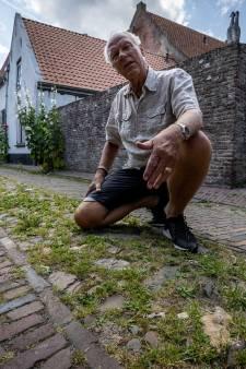 Inwoners Vollenhove balen van onkruid in de straten: 'Het is geen gezicht'