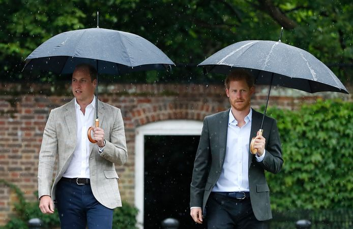 Illustration. Le prince William et le prince Harry en 2017.