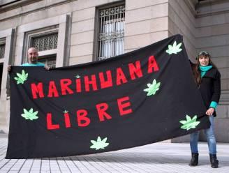 Uruguay verkoopt als eerste land ter wereld marihuana aan burgers