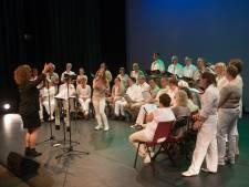 Rabobank of niet: Ermeloos muziekfeestje stoomt door