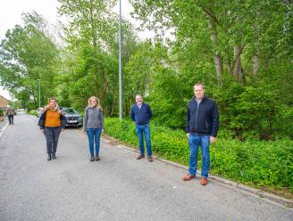 Gemeente koopt twee hectare bos aan in Teralfene