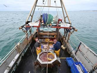 """""""EU verwerpt Brits voorstel over visserij in brexitoverleg"""""""