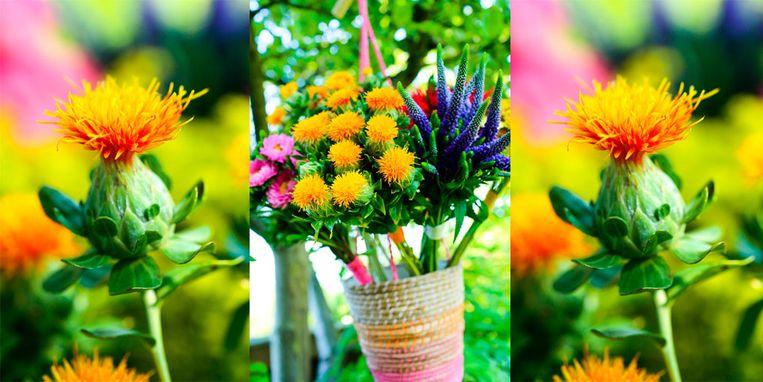 zomerbloemen.jpg
