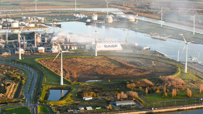 Chemiereus BASF in Antwerpse haven wil zelf medewerkers en eventueel buurtbewoners vaccineren