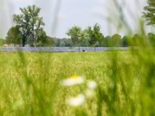 VVD:  'Eerste zonnepark in Berkelland had er nooit mogen komen'