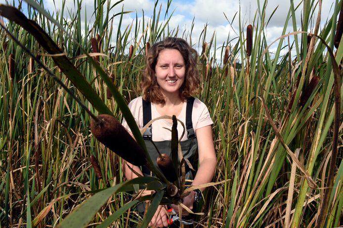 Iris Veentjer (31) tussen de lisdodde bij de Proefboerderij in Zegveld.