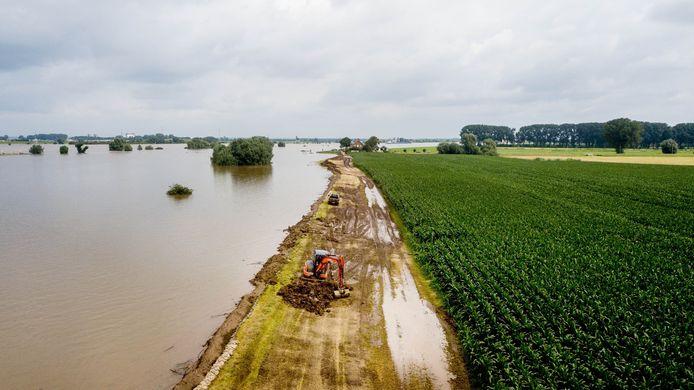 De gebroeders Reijnders zijn samen met loonwerker Smits & de Kleijn bezig om een nooddijk aan te leggen om 25 ha mais te beschermen tegen het wassende Waalwater. Vooralsnog lijkt dat te lukken.