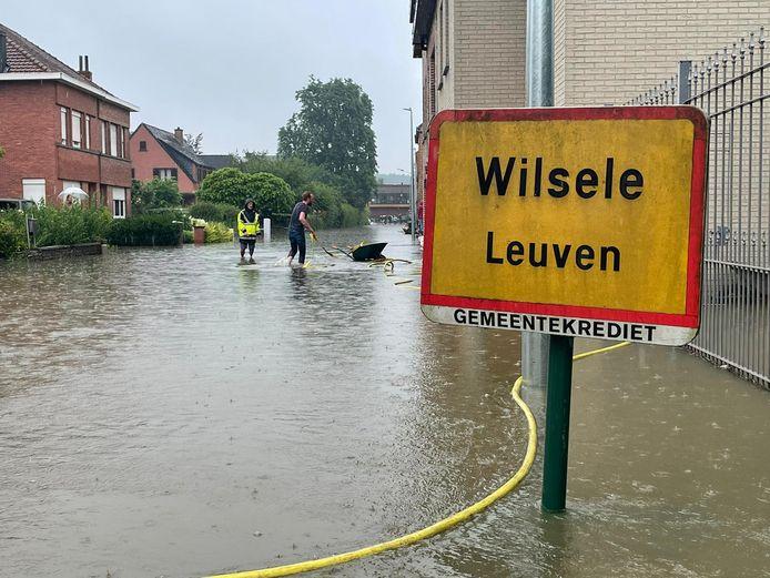 Waterellende in Kessel-Losesteenweg in Wilsele (Leuven)