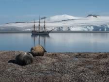 Adwin de Kluyver schreef over Antarctica: 'Ik ga geen tweede keer, het is te kwetsbaar'