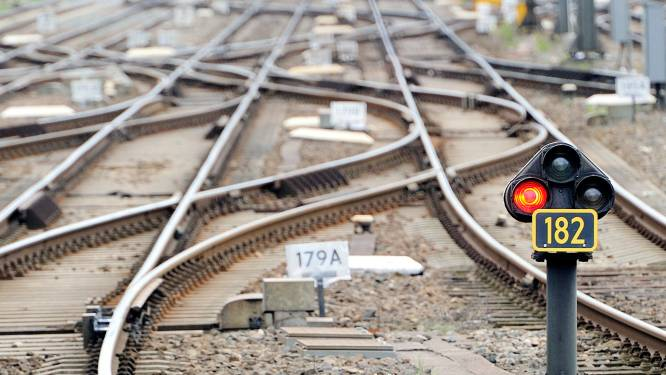 Verongelukte twintiger probeerde 'spannende foto' te maken van zijn nieuwe auto op spoorwegovergang