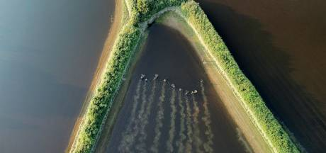 Nog even geduld gevraagd voor grote schoonmaak Maasgebied, sportvissers wel alvast op karperjacht