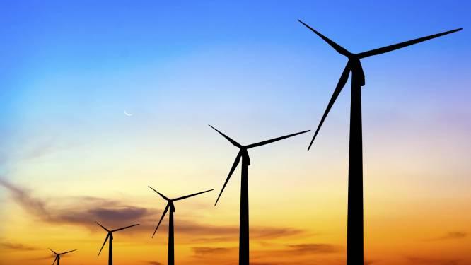 Voorlopige streep door windpark De Pals langs A67: 'Duidelijk dat er nog aanvullende onderbouwing nodig is'