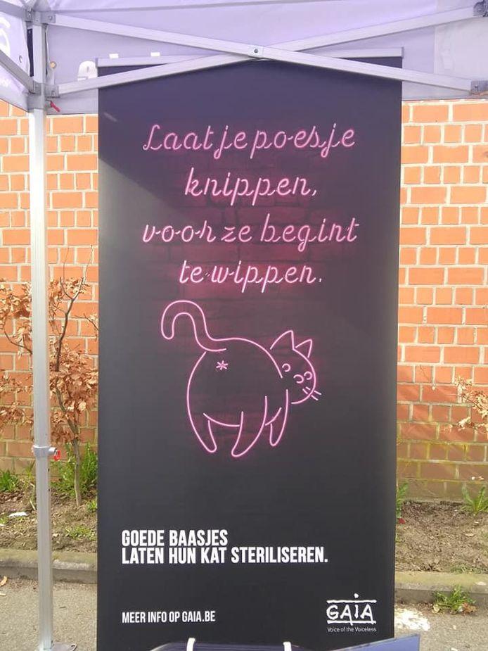 De Katmobiel streek neer op de zondagsmarkt in Wetteren.
