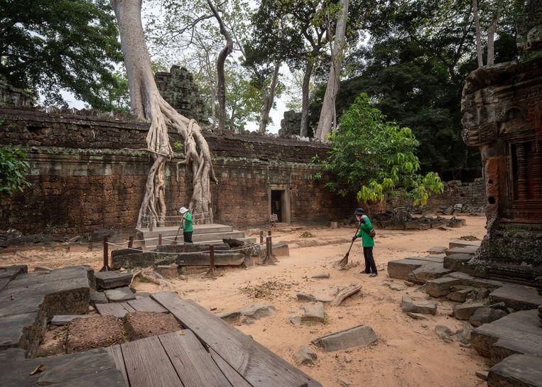 Vegers onderhouden de omgeving van de Ta Prohm-tempel. Beeld Antoine Raab