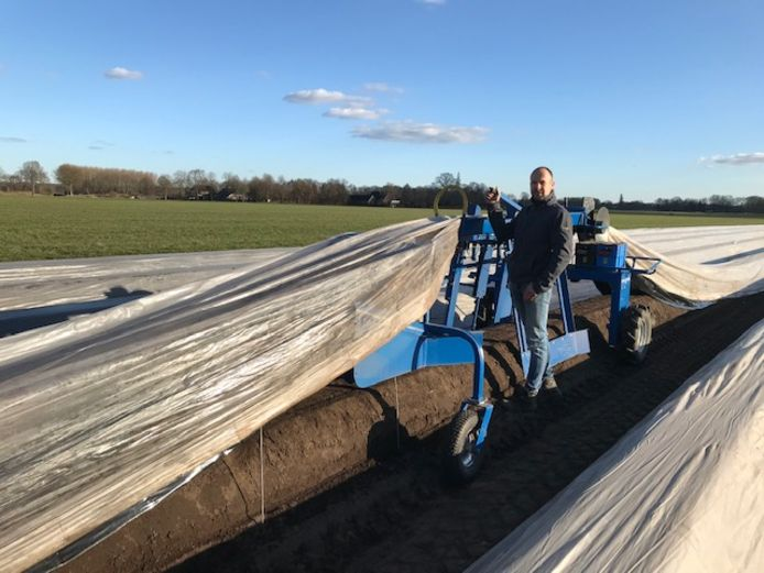 Martin Zielman is druk met het leggen van het plastic op de aspergevelden.