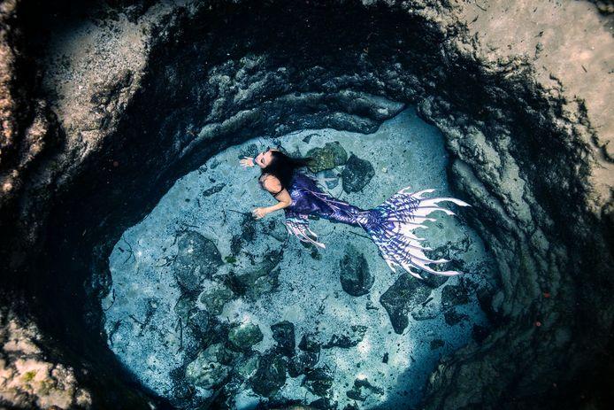 De foto die Elisa nam: Mermaid Iris in een zoetwaterbron in Florida.