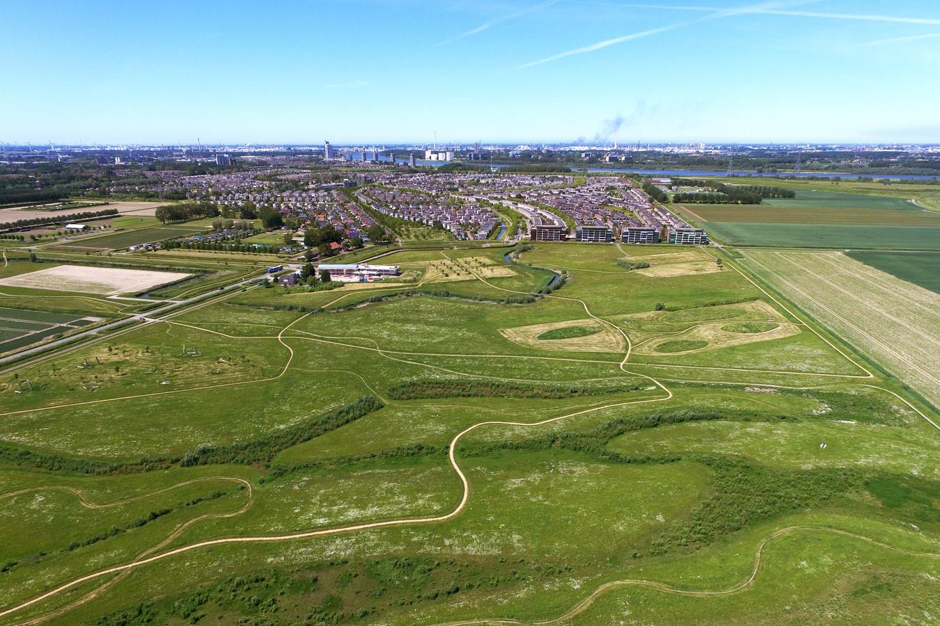 Dit hele gebied moet misschien wel vol met woningen komen. De Spijkenisser Maaswijk zou dan lopen tot aan het Spui, bijna tegen Oud-Beijerland aan.