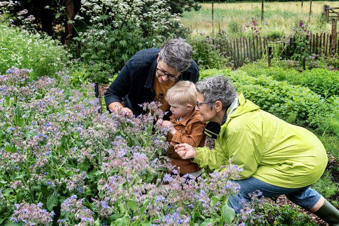 James (3) ruikt met zijn oma's Ina (links) en Loeki aan een plant op de Maldense boerderij Bodemzicht.