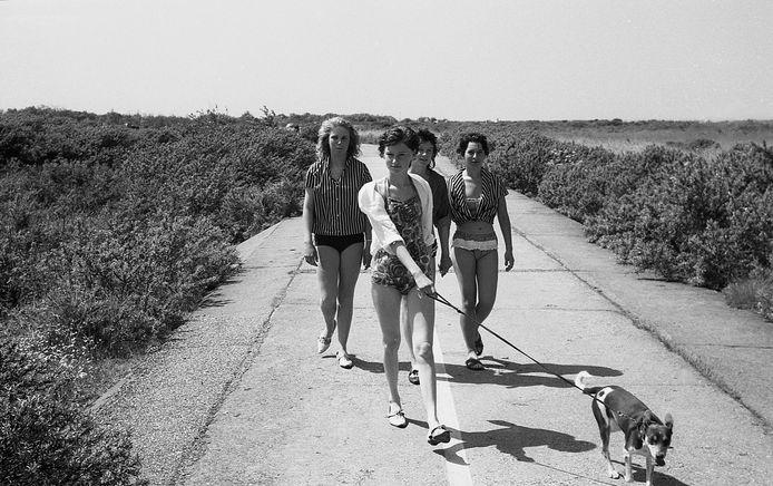 Meiden op het strand van Oostvoorne, 1960. Ook hier zoekt Tjemmes nog naar de identiteit van de dames.