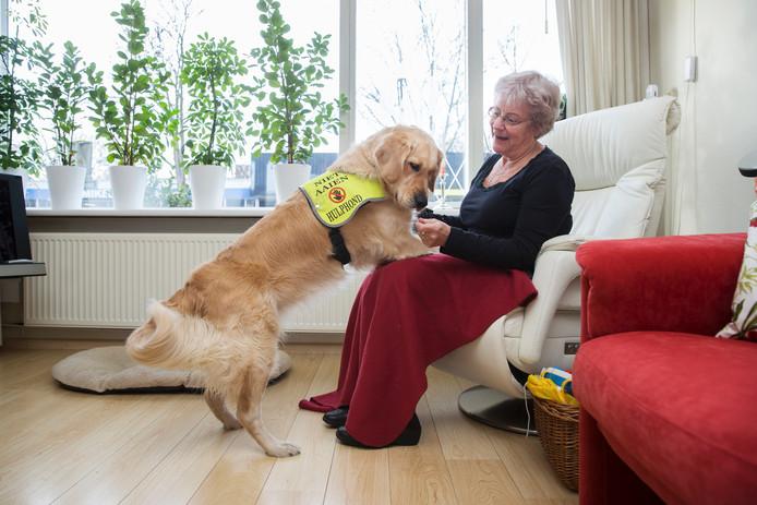 Suzanna van Duffelen (66) uit Doetinchem met haar hulphond Kiky.