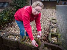 Happy Stones duiken op in Groesbeek: 'Het is fijn  mensen een glimlach te bezorgen'