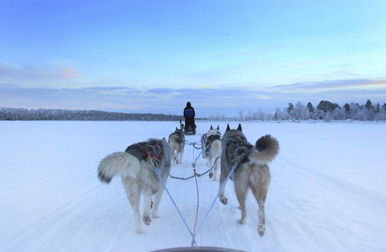 Hot in Europa: expedities in Lapland. Beeld thinkstock