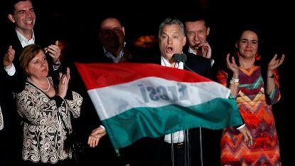 """""""Partij Orban heeft verkiezingen ondermijnd met intimiderende en xenofobe retoriek en duistere campagnefinanciering"""""""