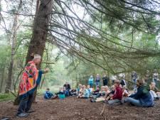 'Het Bos dat van Zichzelf is' in Holten, kent geen wandelpaden