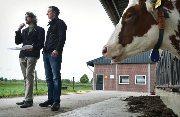 null Beeld Marcel van den Bergh.