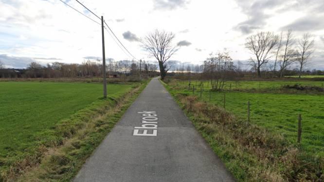 """Groen Berlaar voorstander van fietsstraat in Ebroek: """"Aanpassing is nodig voor komst van hondenlosloopweide"""""""