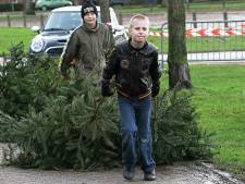 Waarschuwing om kinderen géén kerstbomen in te laten zamelen: 'Niet voor niets afgelast vanwege corona'