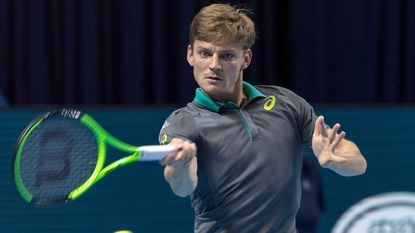 David Goffin blijft in top 10, Elise Mertens 35ste