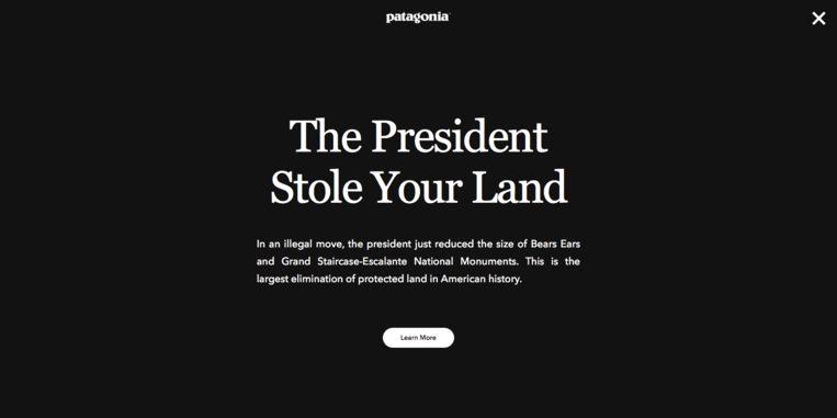 Een krachtige boodschap van kledingmerk Patagonia op haar website. Beeld Screenshot Patagonia
