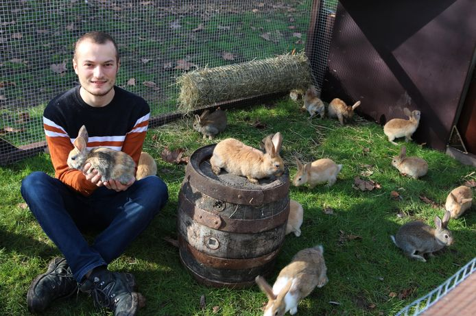 Wellenaar Loïck Van Wesemael (25) start met biologische konijnenkweek.