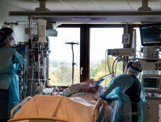 Aantal Covid-patiënten in AZ Sint-Blasius blijft laag