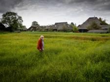 Harm Piek (74) voorkomt in Dwarsgracht dat riet en ruigte de natuur verdringen en wordt beloond met prijs: 'Doe je niks, dan gaat deze plek verloren'