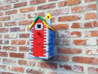 LEGOMASTERS at home: bouw je eigen nestkastje