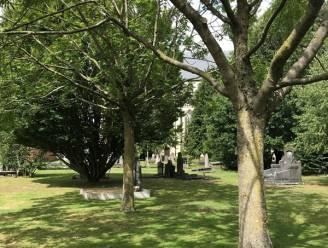 Gezocht: peters of meters die waardevolle graven onderhouden