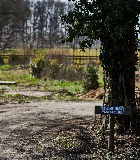 Bloemenkwekerij in Vorden mocht ontruimd worden, maar gemeente Bronckhorst ging daarin wel veel te ver