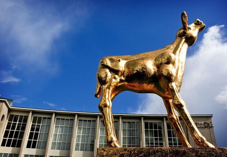 Het Gouden Kalf is weer voor de Stadsschouwburg in Utrecht geplaatst. Het kunstwerk staat in de stad in verband met het Nederlands Film Festival. Beeld anp