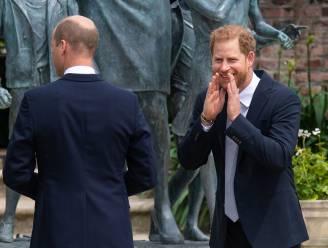 """""""Prins William zal het ergst uit Harry's biografie komen"""""""