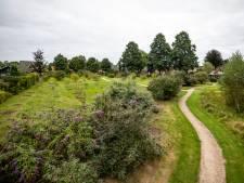 Diepenheim renoveert tuinen: Van kleurrijke bloemenstrook tot picknickbank 'Hosta la vista'