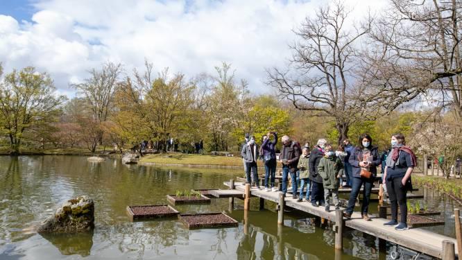 """Hasselt heeft toeristische topzomer achter de rug: """"Vooral De Japanse Tuin blijft grootste favoriet"""""""