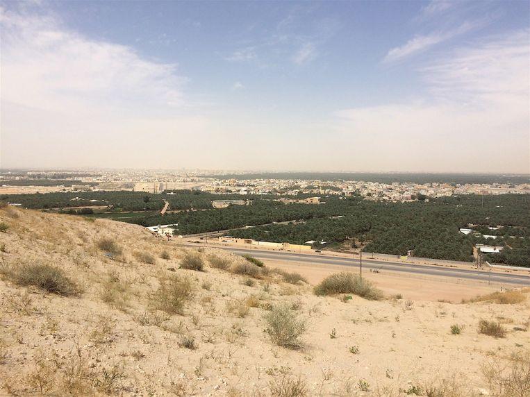 De oase Al-Ahsa Oasis in Saoedi-Arabië.
