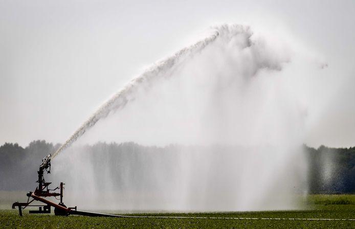 Grasland mag worden beregend in april en mei. De Brabantse waterschappen stellen geen verbod in.