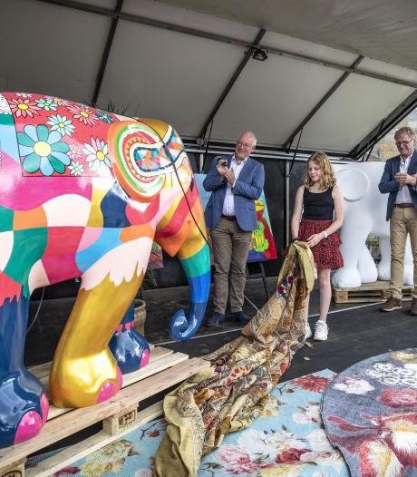 Kudde van 70 kleurrijke olifanten zwerft dit weekend uit over Noordoost-Twente