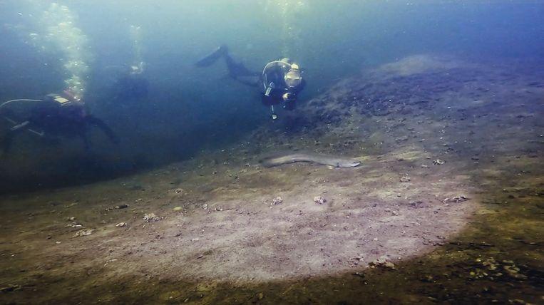 Onderwaterbeeld uit de expositie EndLESS Amsterdam bij ARCAM Beeld Maarten Erich / Divection