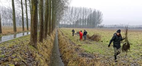 Voedselbos in Schijndel kost vooral engelengeduld