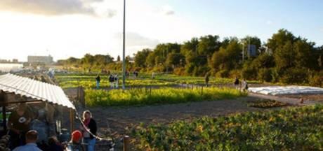Succesvolle stadsboerderij Rotterdam breidt uit